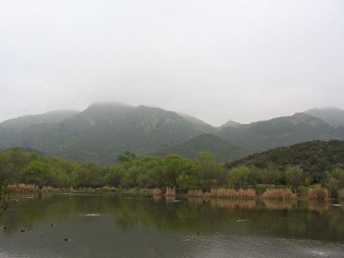 foggy santa monica mountains