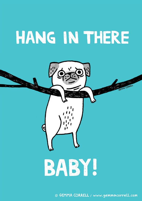 Hang in There (Pug edition)