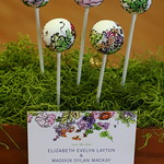 Watercolor Cake Pops with Matching Invitation