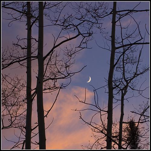 sunset moon lake newmexico square crescent squareformat nm goldenhour canjilon