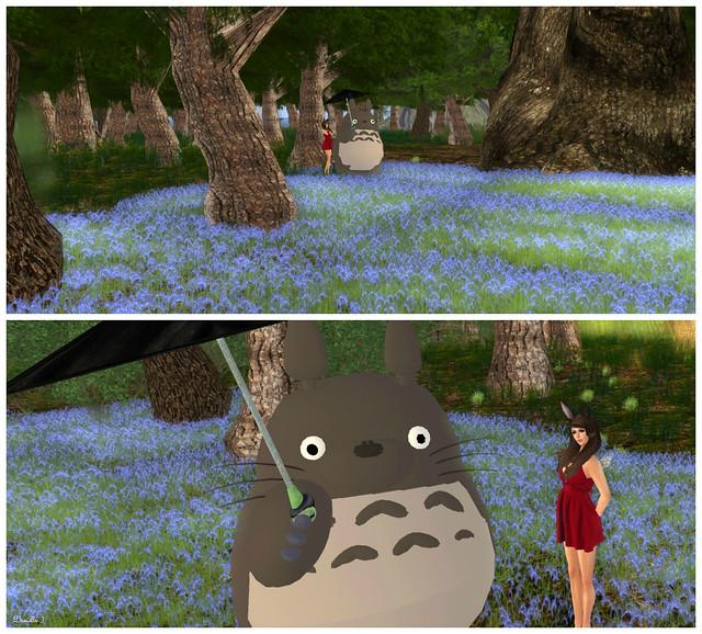 Totoro Digi