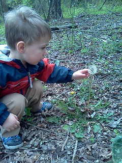 Spencer on trail 5, April 2013
