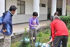 雪霸汶水園區以蟲吃蟲為臺灣百合除害。(圖片來源:雪霸國家公園管理處)