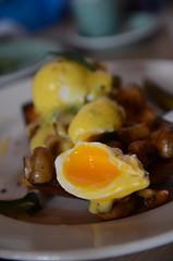 Oozy eggs - Brioche, mushrooms, poached eggs, Holl…