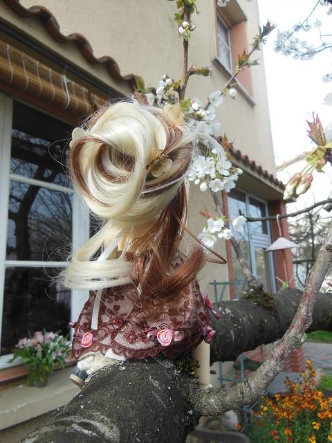 [Toulouse] Résine et fleurs de cerisier 8629620846_d1f332954f_z