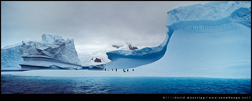 adrift by David/.