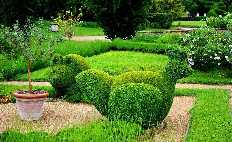 Jardín con animales