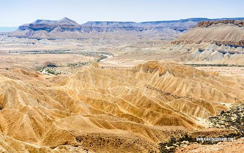 Israel - Negev Desert - Midreshet Ben Gurion 03