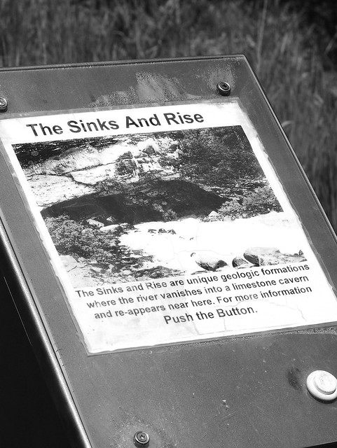 THE SINKS AND RISE