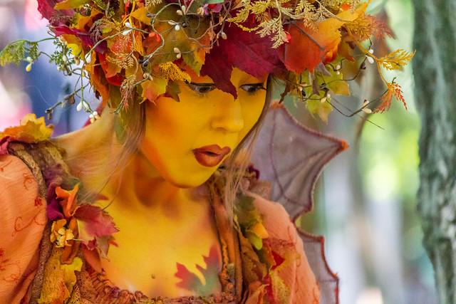 Autumn Fairy Surprise