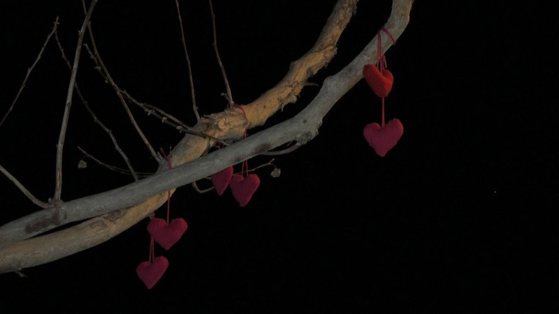 Valentine Yarn Bomb - 2013