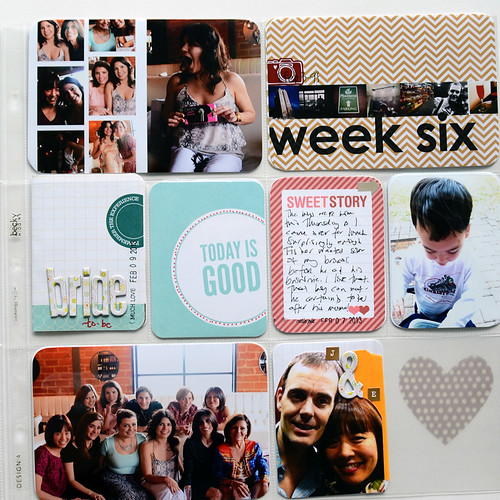 week 06 08