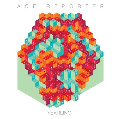 Ace Reporter - Yearling