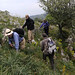 Botanising at Monte Sacro (Andrew Cleave)