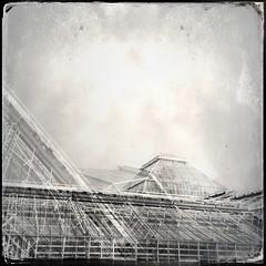 Airy structure. Munich, Botanischer Garten