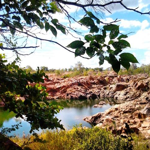 Delmiro Gouveia - Lado da CHESF sob o Rio São Francisco pertencente ao estado de Alagoas #river #nature #tree #sky #water #alagoas #city