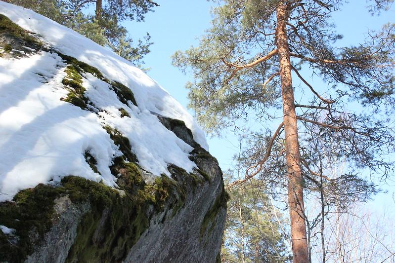 Savonlinna 2013 230