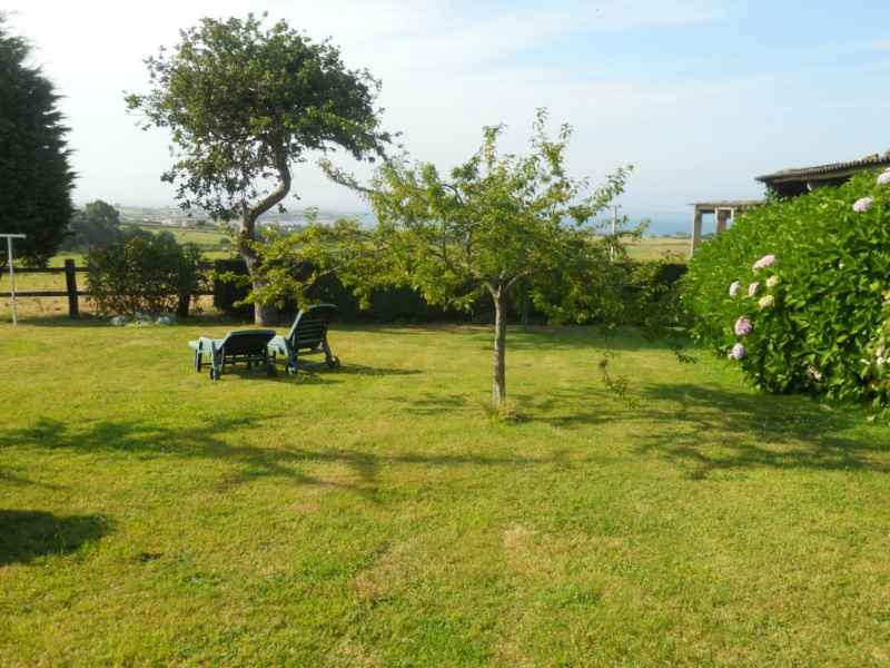 Jardineros en acci n poca adecuada para sembrar el c sped - Como plantar cesped en el jardin ...