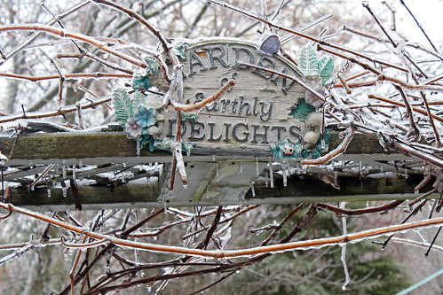 Ice Storm: Garden of Earthly Delights
