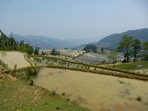 Yunnan13-Yuanyang 14 (1)