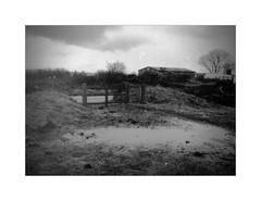 Wasteland [Pen EE]