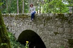 Huntly Castle Bridge