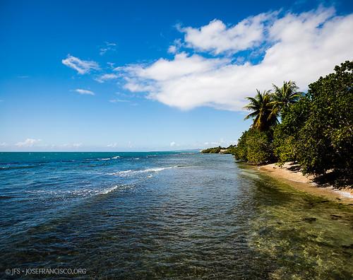 blue panorama cloud tree beach azul clouds flora nikon puertorico playa cielo palmtree nubes árbol pr nikkor palma palmera ponce nube d4 westindies ptgui greaterantilles vertorama 2470mmf28g antillasmayores isladesanjuanbautista 201301311143211433