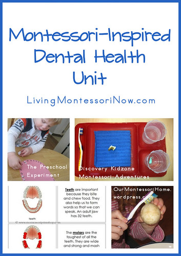Montessori-Inspired Dental Health Unit
