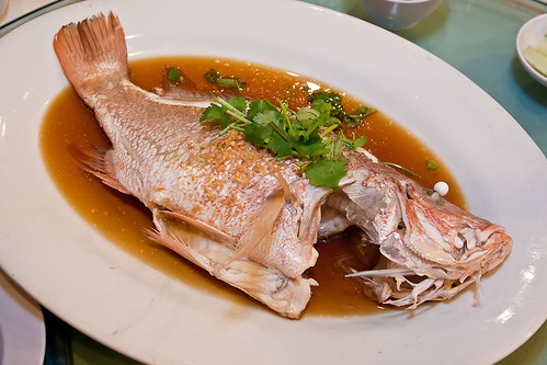 steamed fish IMG_8556