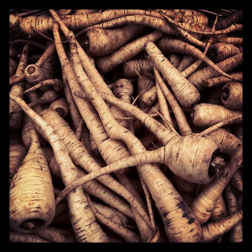 parsnips by Nature Morte