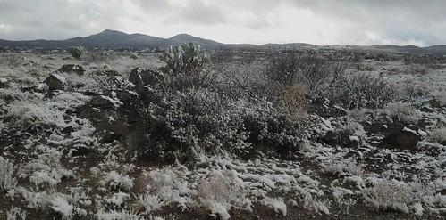 Sonoran Desert Snow by Earth n Stuff