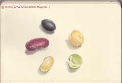 2013_02_18_beans_02_s