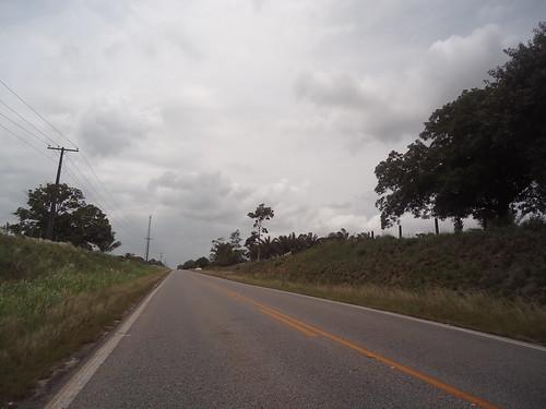 Na estrada by liane patricia