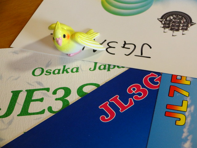 DSC03839.JPG