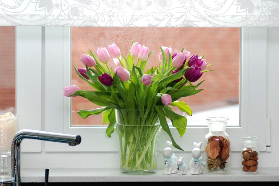 Spring on the window sill