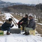 りんごやSUDA果樹園風景