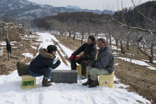 りんごやSUDA果樹園風景_拡大