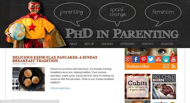 PhdinParenting.com design