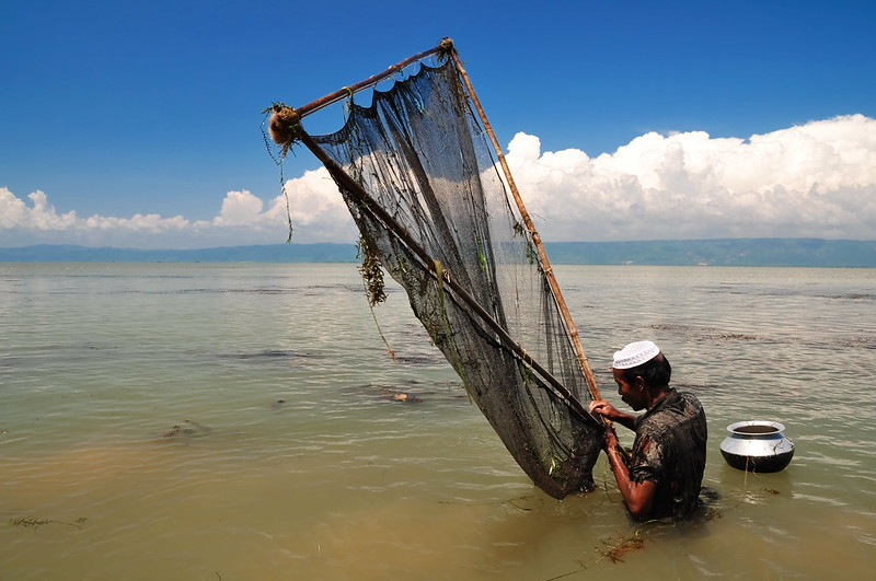 Fishing with a lift net, Bangladesh, . Photo by Balaram Mahalder, 2010.