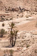 Túnez - Matmata