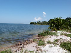 Rubondo Camp, Rubondo Island National Park, Tanzania