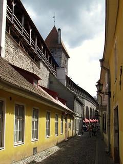 Along Tallinn's Wall