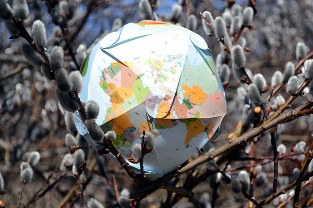 Icosareuleaux Globe