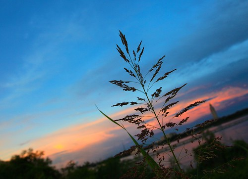 stilllife sunsets batonrouge mississippiriver beautifulviews kenyuel