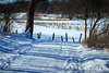 Snowy Path through Teichwiesen Volksdorf; Verschneiter Weg durch die Teichwiesen Volksdorf
