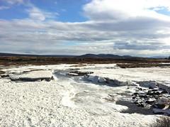 Icy river at Þingvellir (Thingvellir)