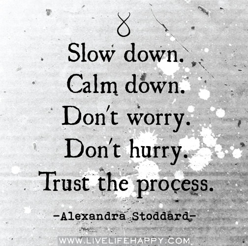Slow down. Calm down. Don't worry. Don't hurry. Trust the process. -Alexandra Stoddard