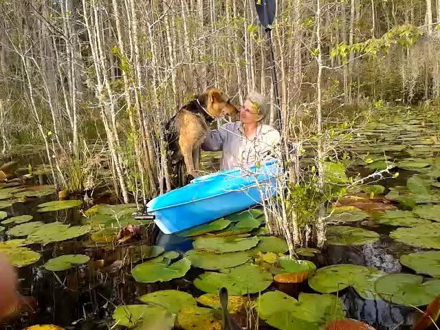 Gretchen encouraging Brown Dog
