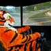 Clemson Tiger on Campus