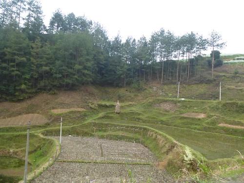 Guizhou13-Kaili-Langde (106)